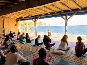Faruk Kurtulus Yoga 2016a