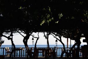 melinda-restaurant_005